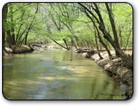 Affordable creekfront acreage for sale in Wilkes County NC