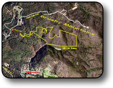 Brushy Mountains acreage for sale 107 acres