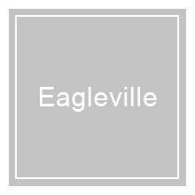 Eagleville Area