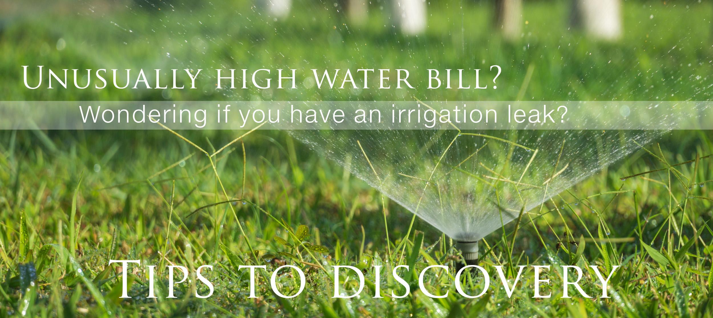 Irrigation Leak High Water Bill