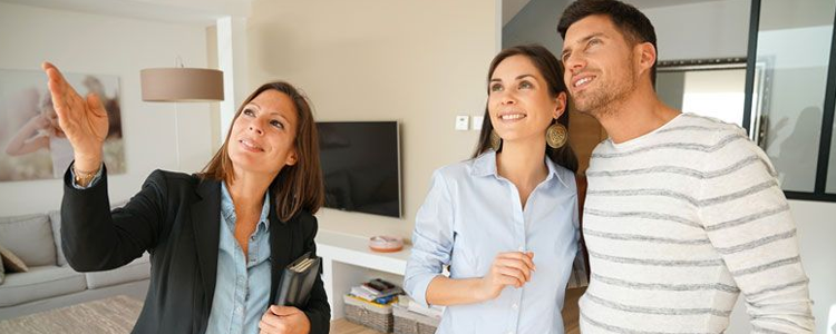 Deciding between Trulia and a Traditional Real Estate Agent
