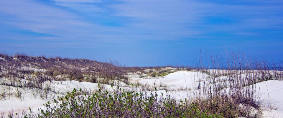 ANASTASIA STATE PARK | FL Day Trips | Property by Ford Team