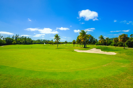 If you love to golf, Palm Beach Gardens, Florida is the place to be since its Florida golf capital.