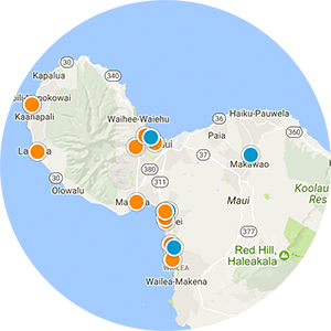 Makena Real Estate Map Search