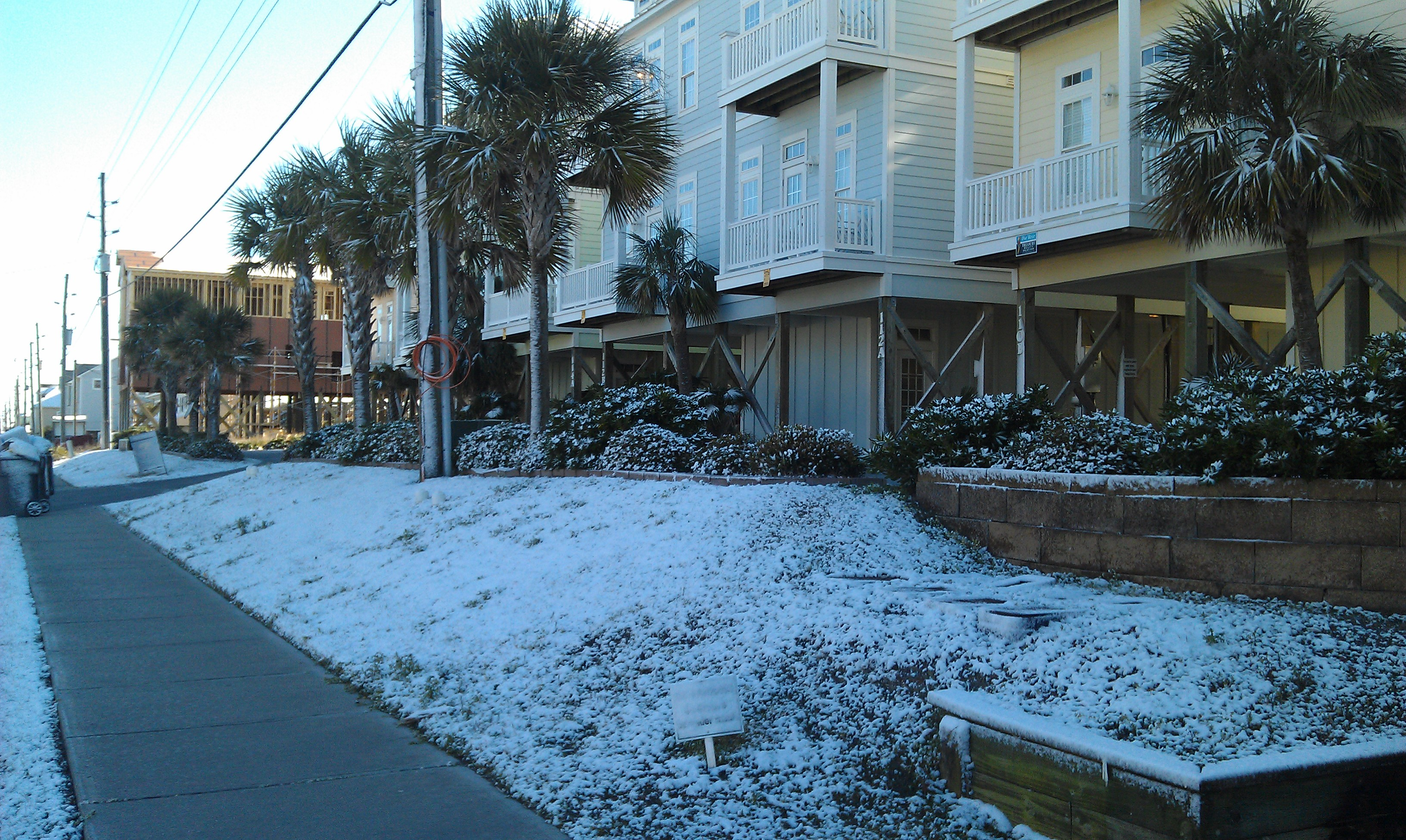 Surf City NC Palm Trees With Snow