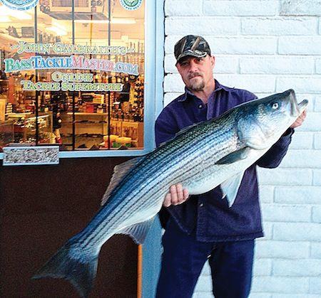 havasu fishing report