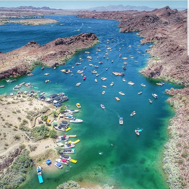 Steamboat Cove Lake Havasu