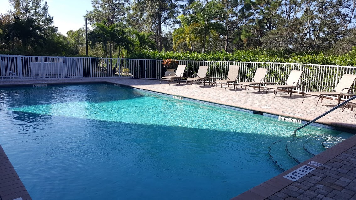 The Carlysle Swimming Pool