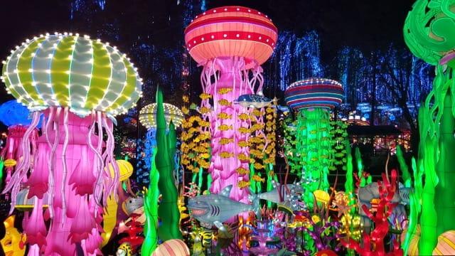 Miami Japanese Lantern Festival