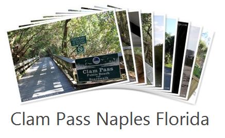 Clam Pass Park Naples Fl