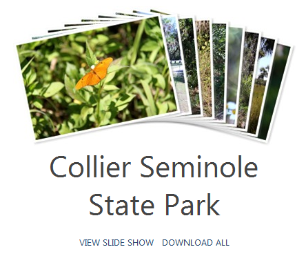 Collier Seminole Photo Album