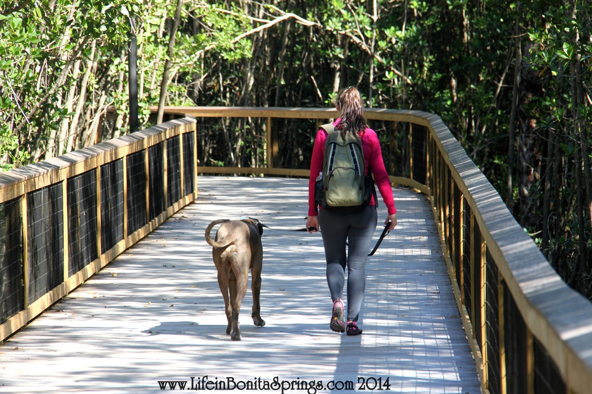 Gordon River Greenway
