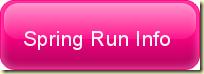 spring run info