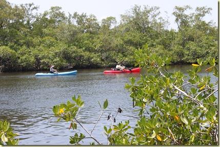 Canoe Estero River