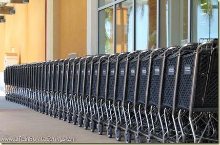Shopping Carts Bonita Springs Florida