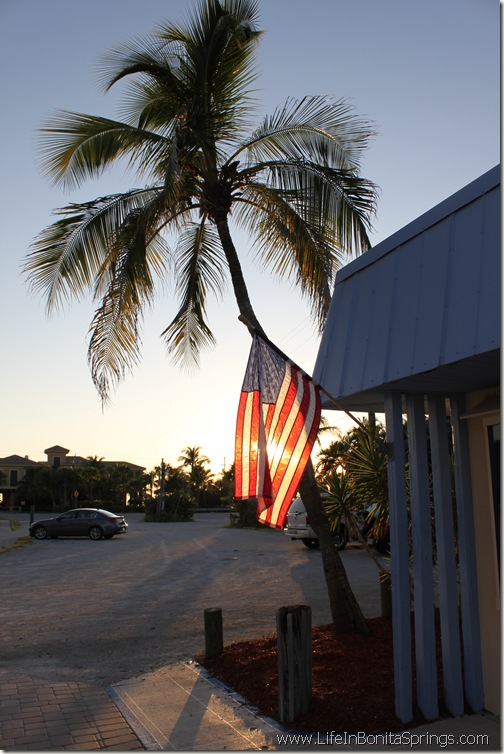 Flag and Palm Tree