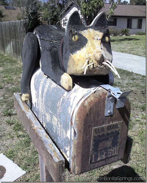Orange Creek Cat Mailbox