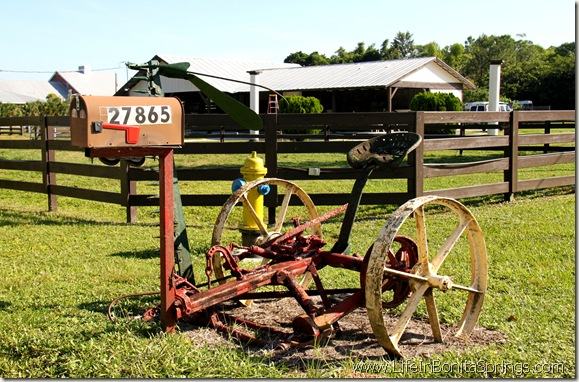 Flesher Farm Mailbox