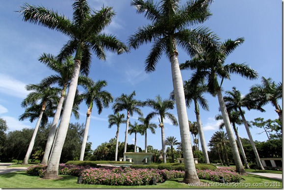Bonita Bay Fountains & Royal Palms