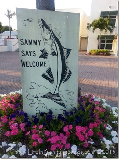 Sammy Snook
