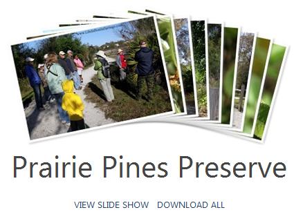 Prairie Pines Preserve Photos