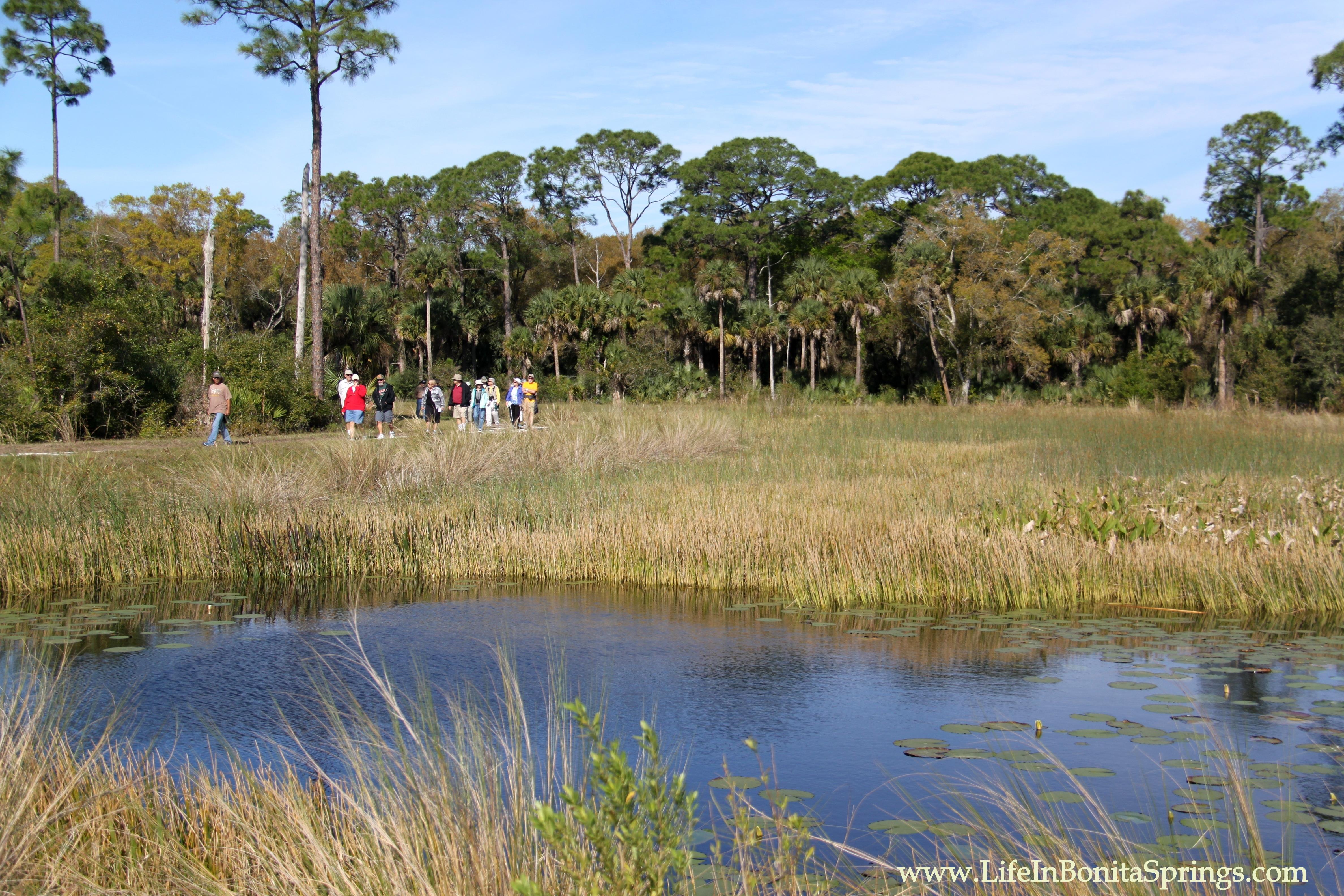 Powell Creek Preserve