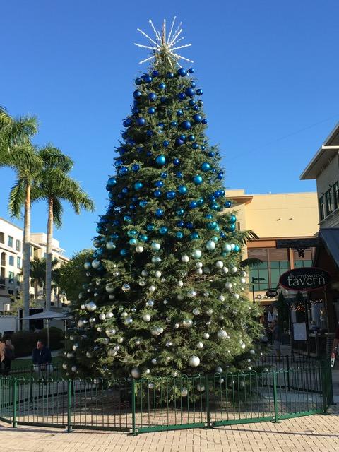Mercato Christmas Tree Naples
