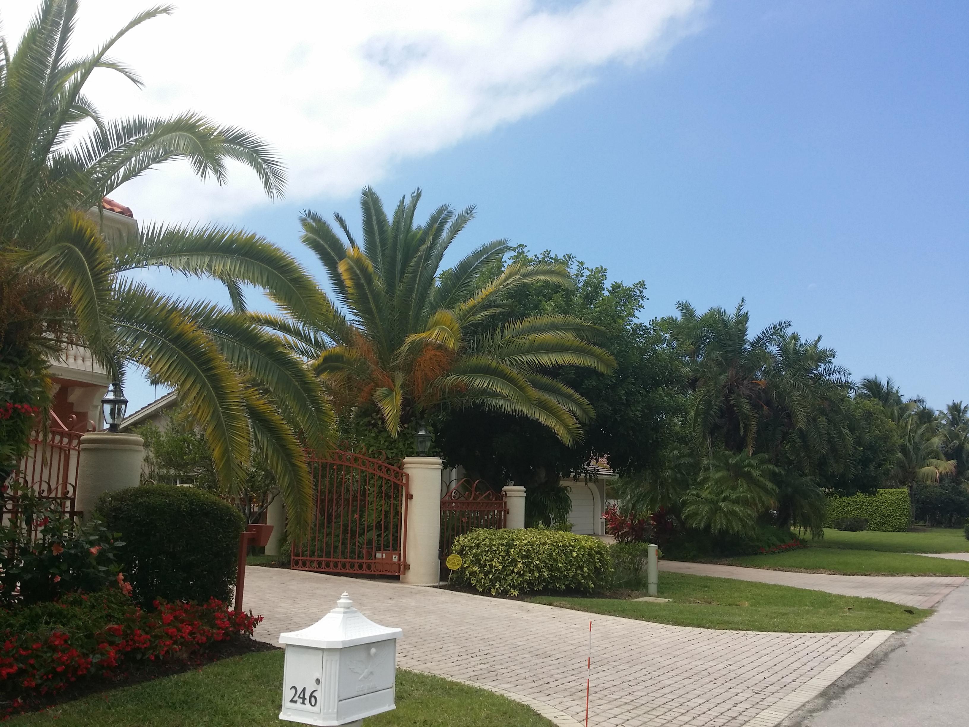 bonita and estero october home market value