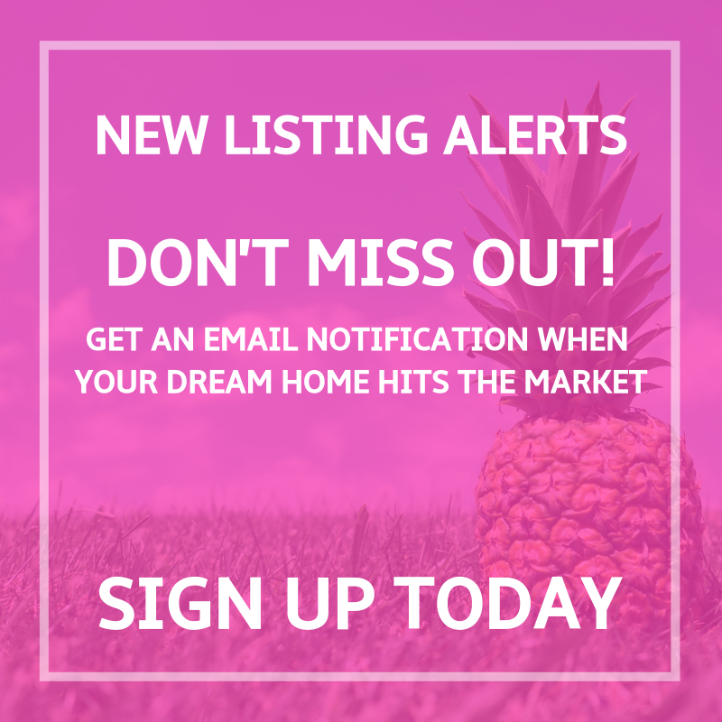 intuly New Listing Alerts