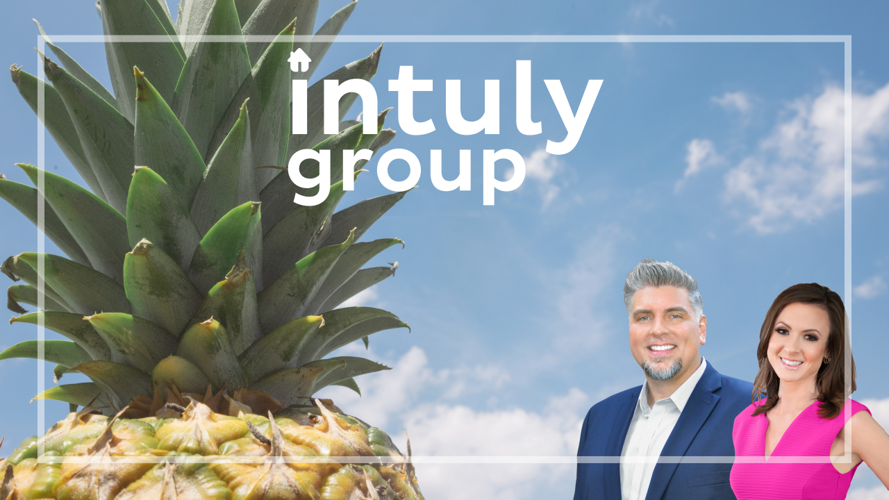 Why Buy and Sell with the intuly group
