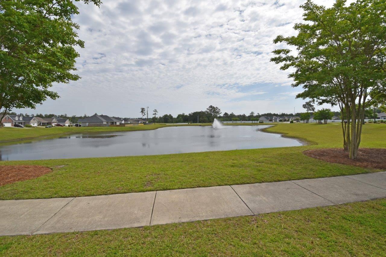 Windsor Park Pond Leland NC