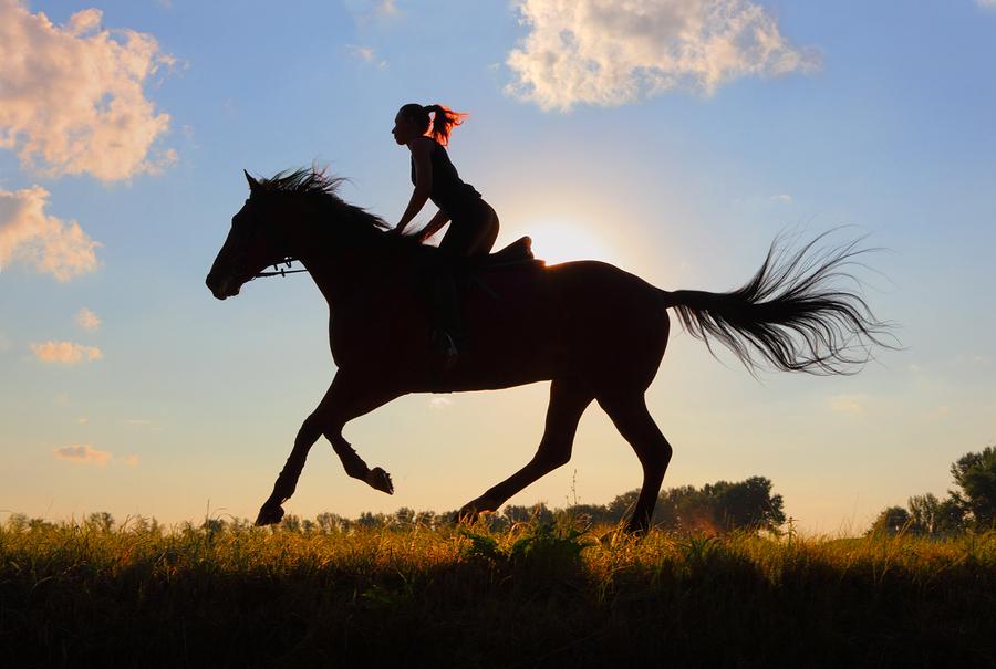 Go horseback riding near your Castle Hayne home.