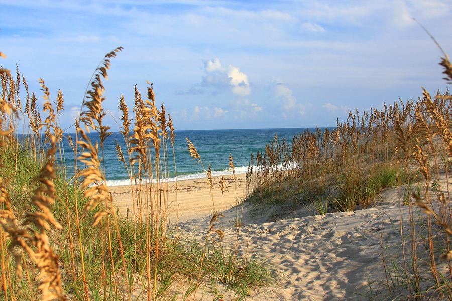 Explore the beach near your Carolina Beach home.