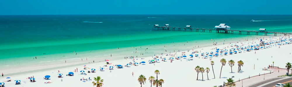 Clearwater Beach Market Report