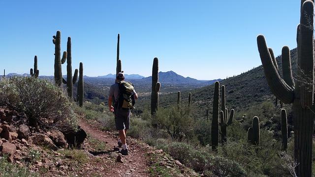 Hiking in Phoenix, AZ
