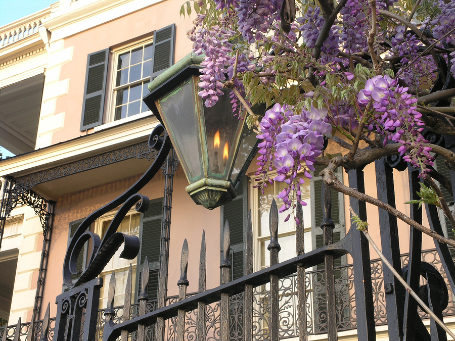 Take a walking tour of Charleston homes.