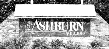 Ashburn Village Real Estate