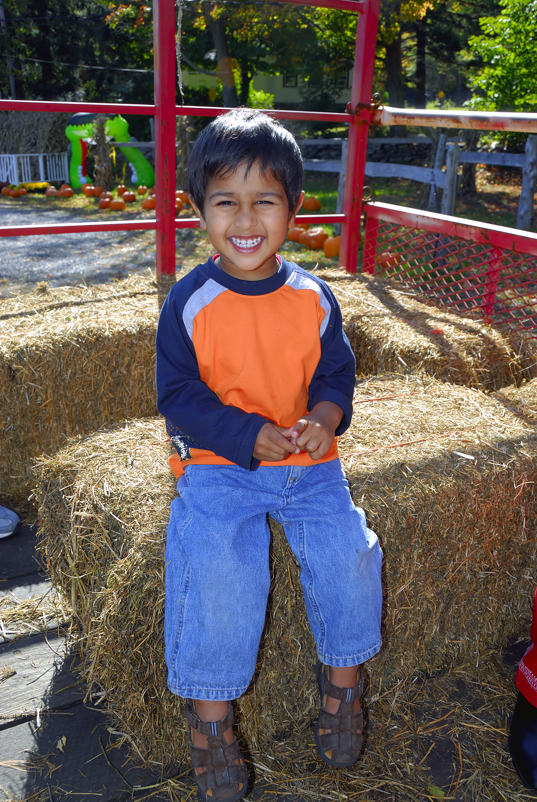 Visit a pumpkin patch near you San Jose home.