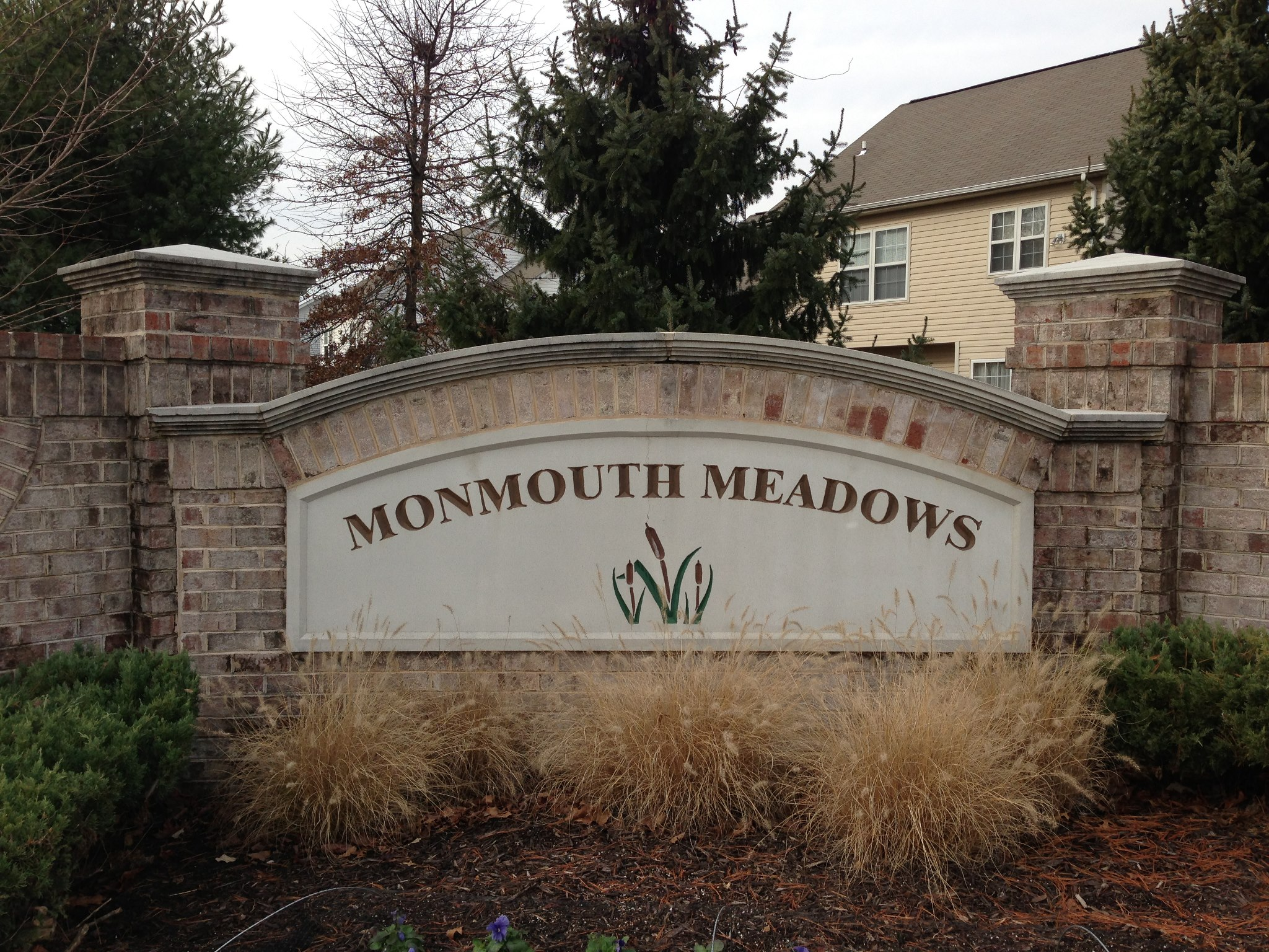 Monmouth Meadows Homes For Sale
