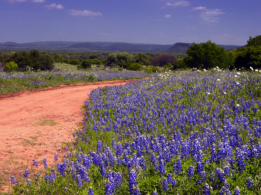 Explore the nature preserve near Dallas Fort Worth real estate.