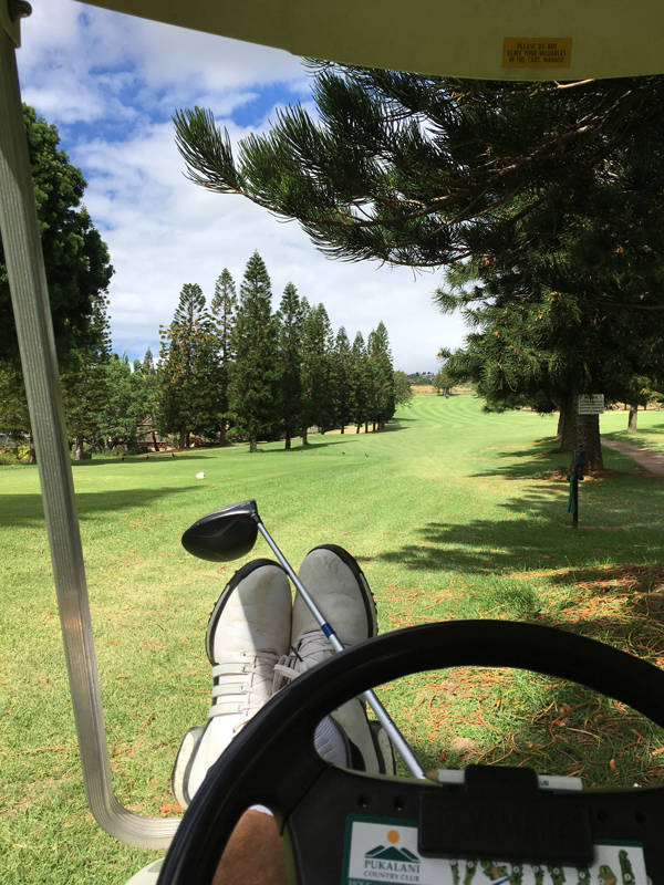 Relax and Play Golf on Maui