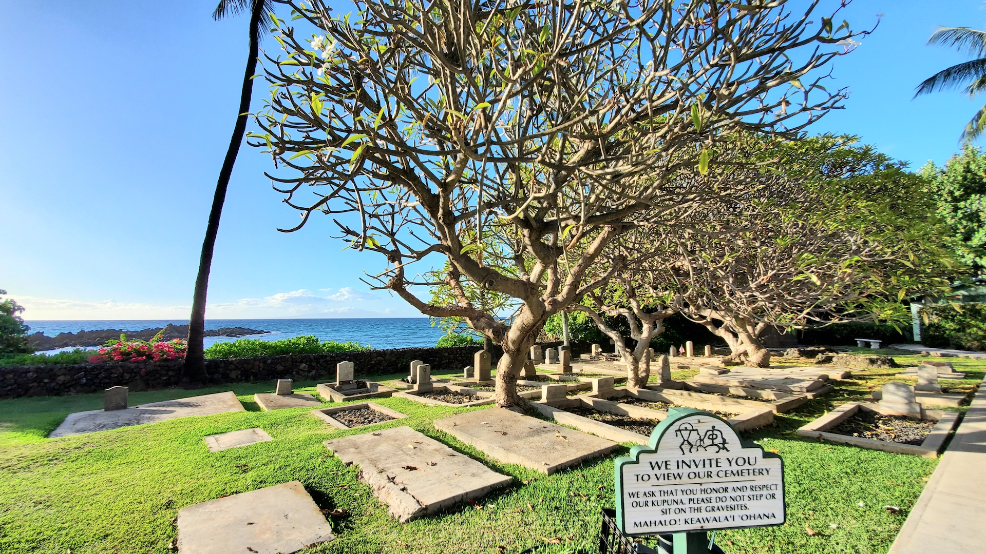 View from the Keawala'i Congregational Church looking out towards the Pacific Ocean.