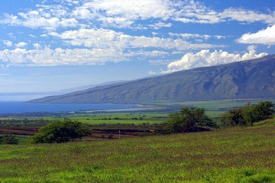 Maui Land for Sale