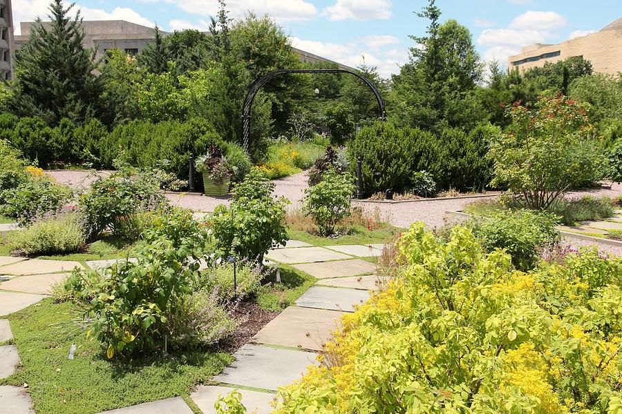 DC Metro Home Owners Visit the US Botanic Garden