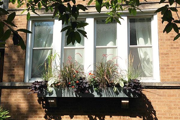 Urban Garden Chicago