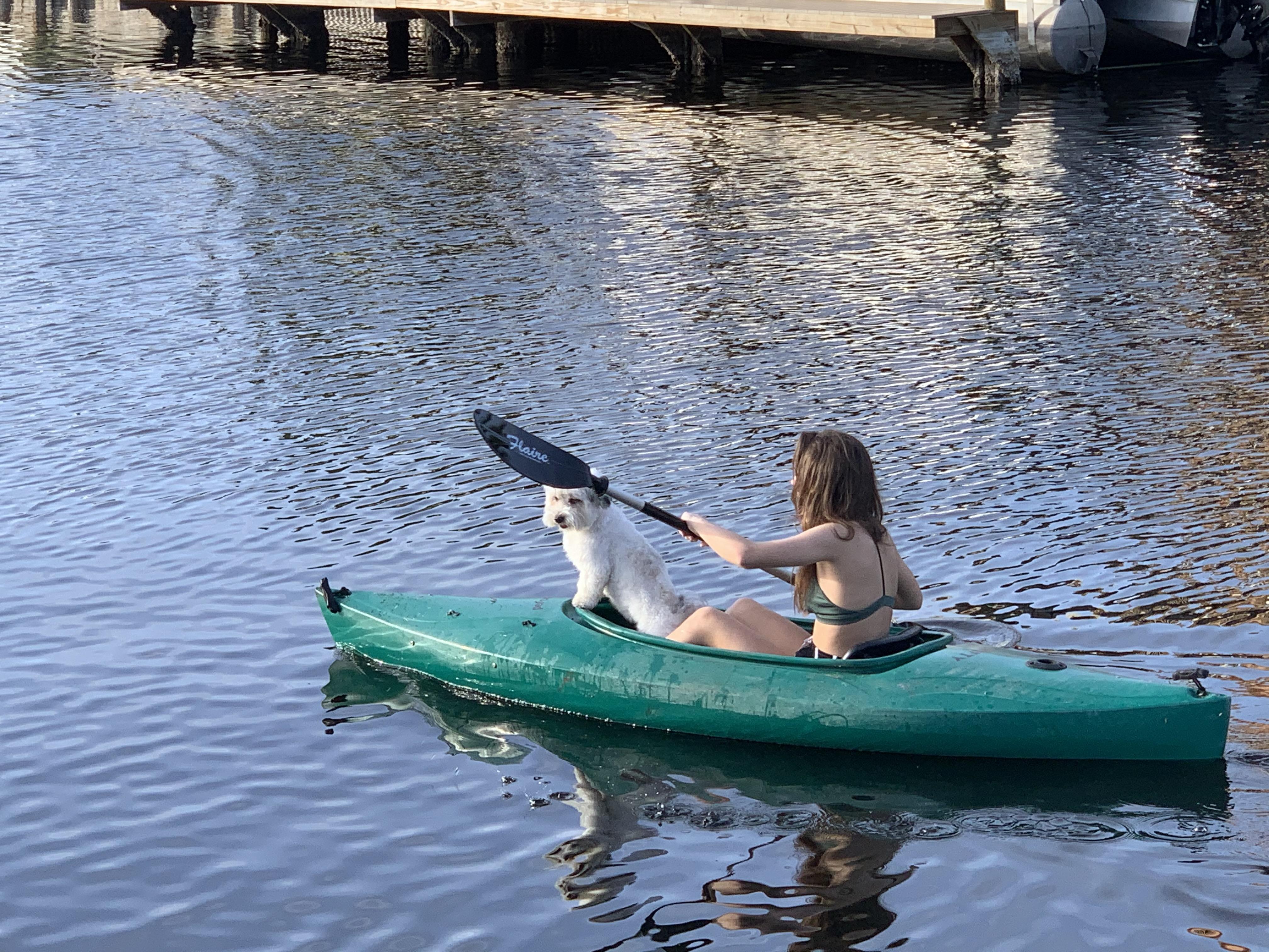 Kayaking the Island