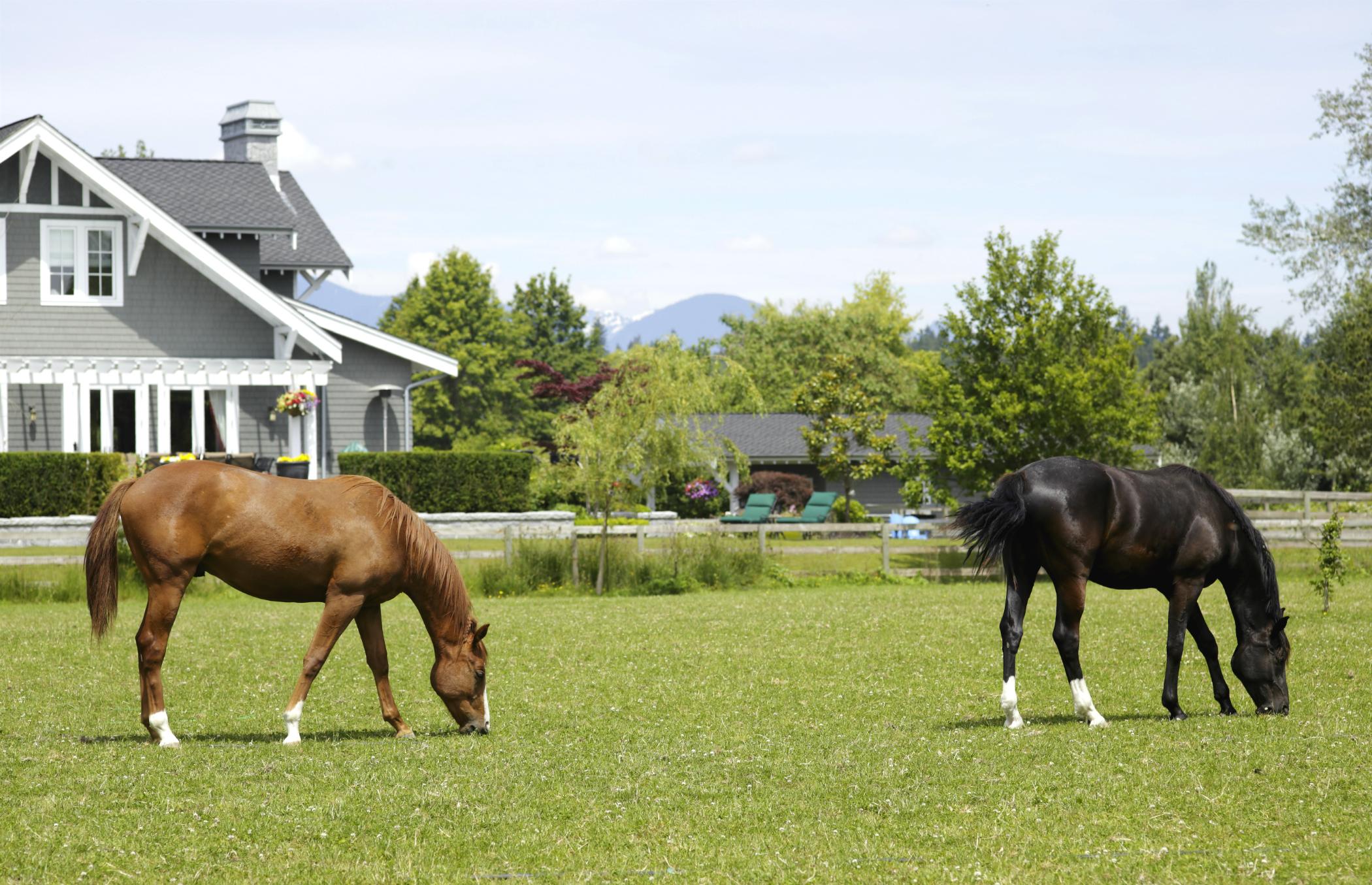 Dayton Area Horse Properties - Equestrian Properties for