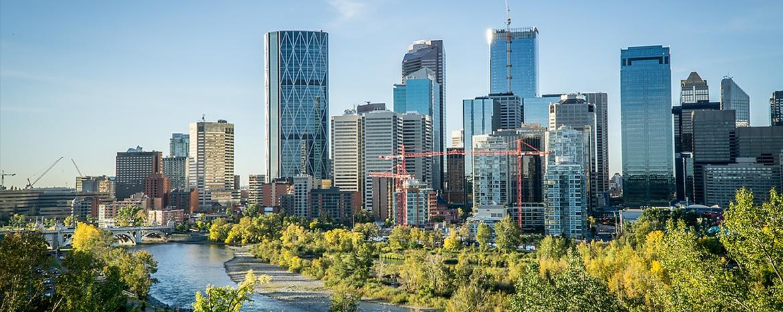 Calgary WebA