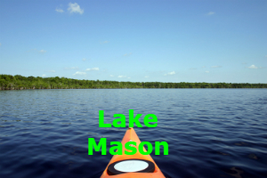 Lake Mason Home Search
