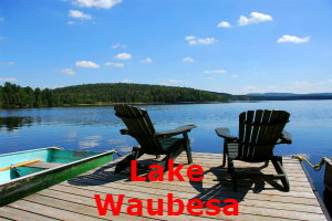 Lake Waubesa Home Search